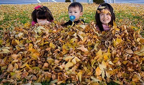 Playing with leaves at Costco